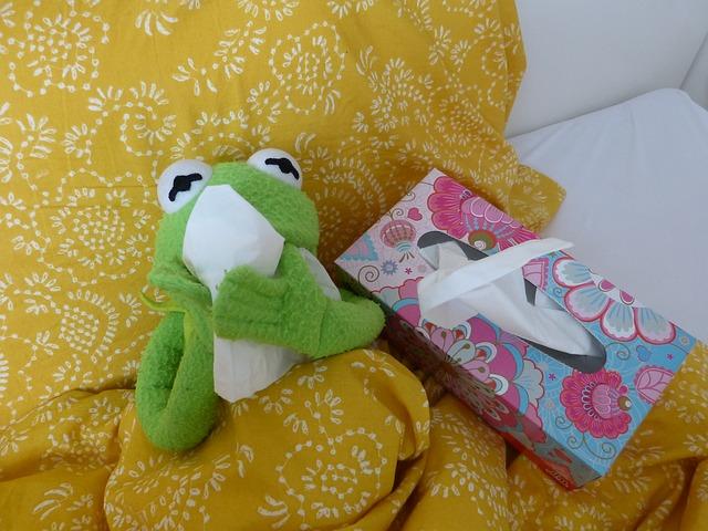 Plüschtierfrosch mit Taschentüchern