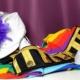 Karnevalistischer Tanzsport | Was ist das eigentlich?